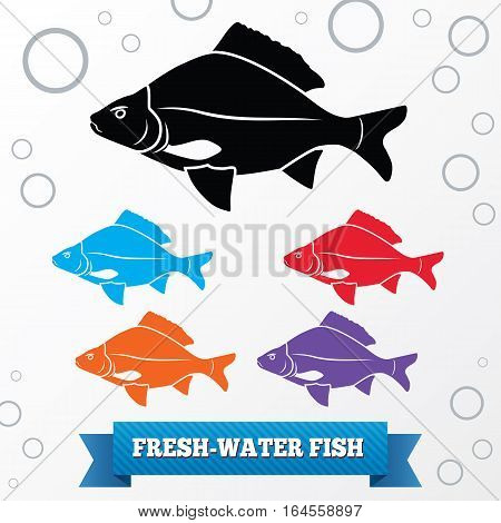 Fish icon. Food symbol. Cyprinidae family Carassius. Colored signs with label on white background. Vector isolated.