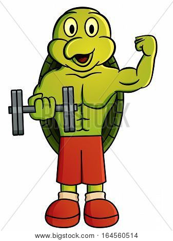 Cartoon illustration of a turtle holding dumbbell. Vector character.
