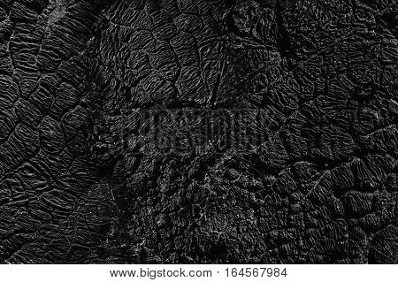 Texture background seamless pattern. This is useful for designers. Bitumen resin crack from the heat of the solar wind. Solid or viscous organic compound; substance used in road construction