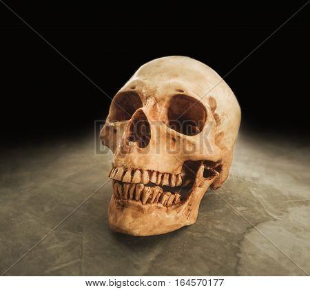 human skull on grunge floor with dark black background.