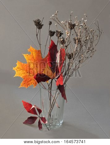 Autumn bunch of leaves and dry plants in warm colors, modest and beautiful decoration for the interior