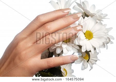 Beautiful female fingers with pastel pink manicure touching spring flowers. Care about female hands healthy soft skin. Spa cosmetics. Close-up of beautiful fingers with nails polish.