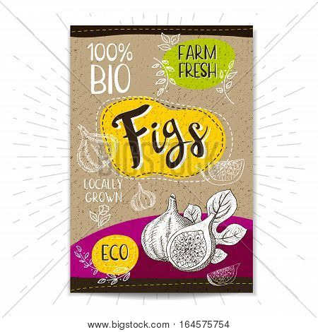 Colorful label in sketch style, food, spices, cardboard textured background. Figs Fruits. Bio, eco, farm, fresh. locally grown. Hand drawn vector illustration