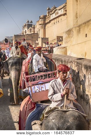 AMER, INDIA - NOVEMBER 18, 2016: On the way up to the Amber Fort in the city of Amer near Jaipur in India, two lines of elephants are travelling. One row is going up with tourists and the other is coming down with just their drivers.