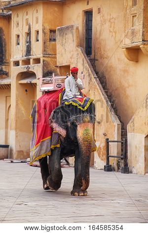 Amber, India - November 13: Unidentified Man Rides Decorated Elephant In Jaleb Chowk (main Courtyard