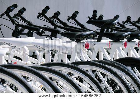 Row of bike parking for rent. Bicycle parking organized