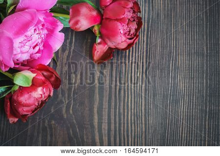 Red and pink peonies on a wooden table. Beautiful floral background with space for text.