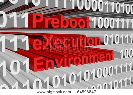 Preboot eXecution Environment in the form of binary code, 3D illustration