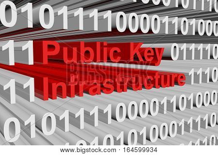 Public Key Infrastructure in the form of binary code, 3D illustration