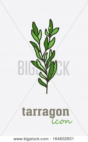 Tarragon vector icon. Vegetable green leaves. Greenery. Culinary herb spice for cooking, medical, gardening design. Organic product flavor ingredient for label, sign, illustration