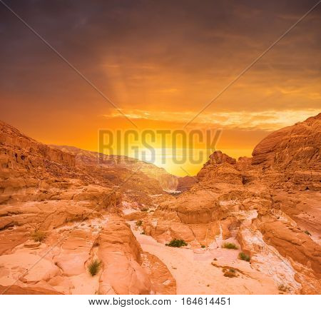 Desert landscape background global warming concept Sinai, Egypt