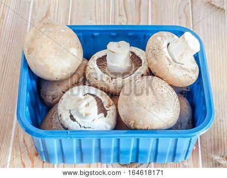 Mushrooms Champignon, Agaricus Bisporus, Blue Casserole, Close Up, Wood Background.