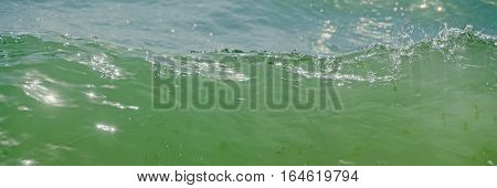 Blue, Green Water Waves, Black Sea Sandy Shore, Seaside With Water Foam, Lather, Close Up