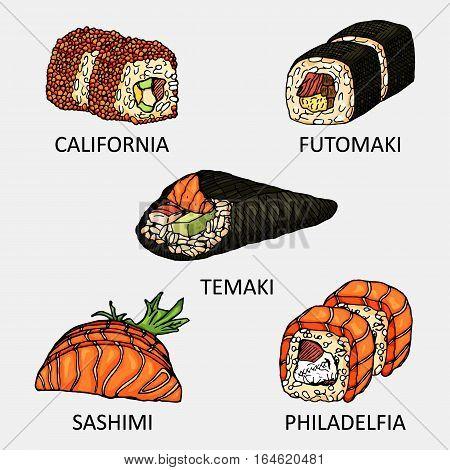 Graphic sushi set include sake, ebi, ikura and tamago icon. Vector colourful sketch used for advertising sushi menu or recipe book design.