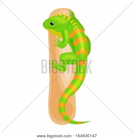 iguana animal and letter for kids abc education in preschool.Cute animals letters english alphabet. Cartoon animals alphabet for learning letters vector illustration. Single letter with wild animal iguana