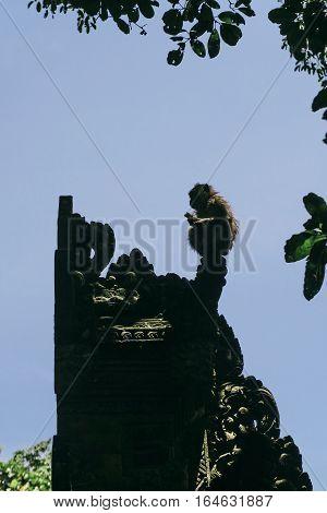 Monkey silhouette on top of Balinese Temple Gate, Ubud, Bali