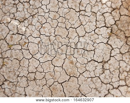 cracks in the ground,dry cracked texture,abstract relief pattern