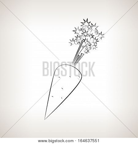 Carrot, Image Carrot in the Contours on a Light Background ,Black and White Illustration