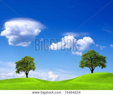 Spring landscape on blue sky