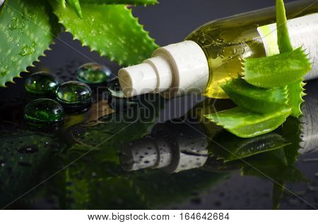 beauty products for spa with aloe vera on a black background