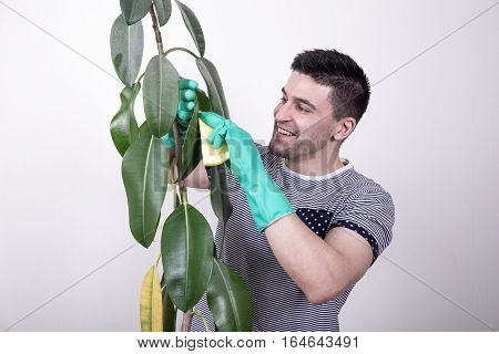 Young Man Cleaning