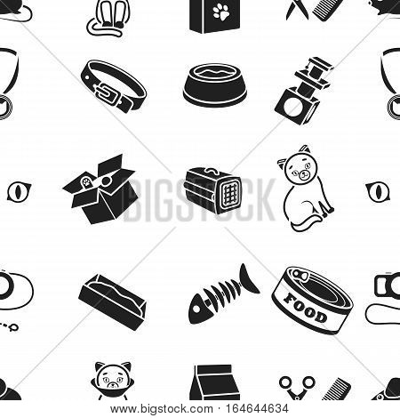 Cat equipment pattern icons in black style. Big collection of cat equipment vector symbol stock