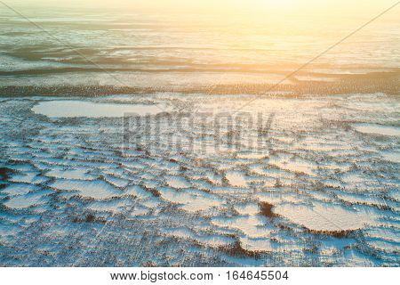 Aerial view above the endless snow covered tundra in time of short winter day. Small polar trees are illuminated by the low sun.