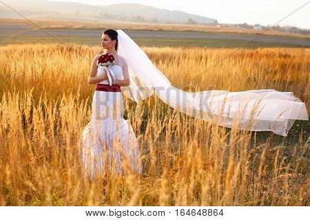 Wind Blows Away Bride's Veil While She Stands On The Golden Field
