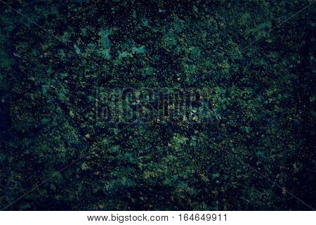 Grunge texture colors of mold and swamps