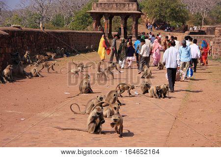 Ranthambore, India - February 2: Unidentified People Walk Around Ranthambore Fort On February 2, 201