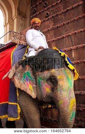 Amber, India - March 1: Unidentified Man Rides Decorated Elephants Through Suraj Pol On March 1, 201