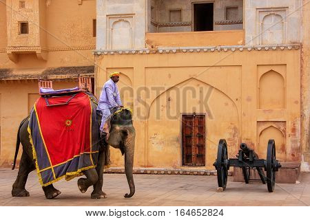 Amber, India - March 1: Unidentified Man Rides Decorated Elephantin Jaleb Chowk In Amber Fort On Mar