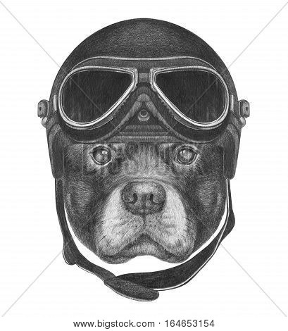 Portrait of Rottweiler with Helmet. Hand drawn illustration.