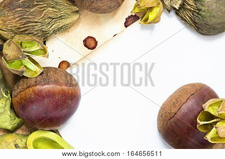A background with fresh raw chestnuts and dried plants and place for your text.