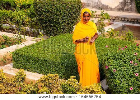 Amber, India - November 13: Unidentified Woman Walks In The Garden In Amber Fort On November 13, 201