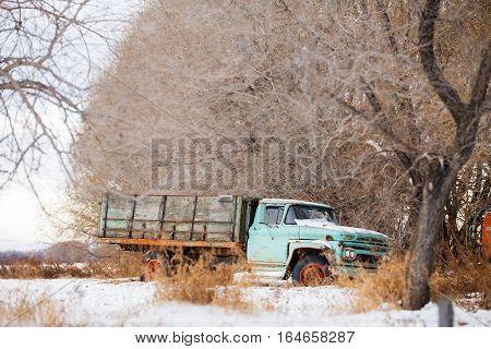 Vintage grain truckunder bare trees in winter