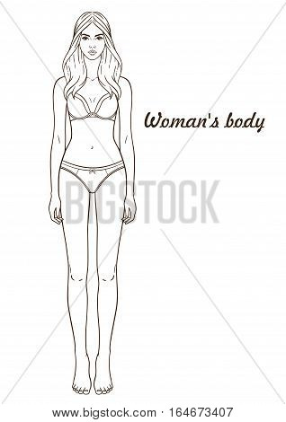 Vector illustration of woman's body. Isolated outline line contour. Template girl in underclothes. Paper doll