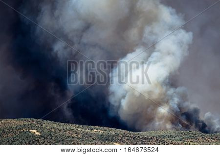 Dense White Smoke Rising from the Raging Wildfire