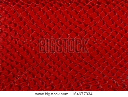 bright red texture snake skin as a background