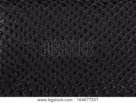 black texture snake skin reptile like background