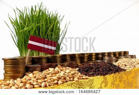 Latvia Flag Waving With Stack Of Money Coins And Piles Of Wheat And Rice Seeds