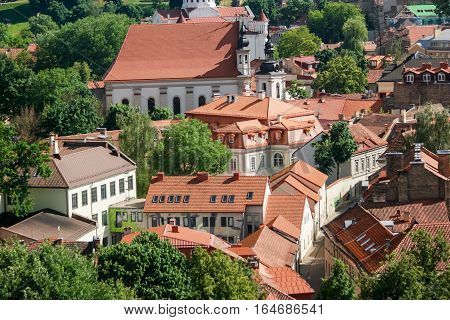 Town buildings and trees. Houses with red rooftops. Historic district during summer.