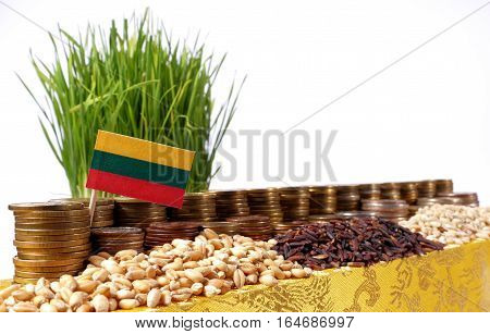 Lithuania Flag Waving With Stack Of Money Coins And Piles Of Wheat And Rice Seeds