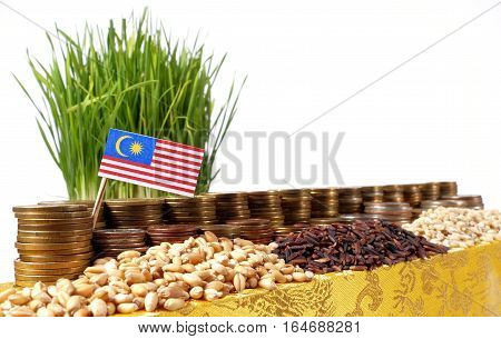 Malaysia Flag Waving With Stack Of Money Coins And Piles Of Wheat And Rice Seeds