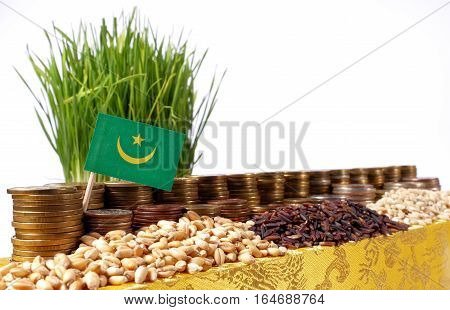 Mauritania Flag Waving With Stack Of Money Coins And Piles Of Wheat And Rice Seeds