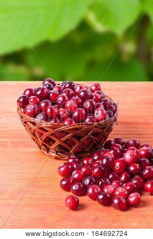 Basket with cranberries on a wooden background