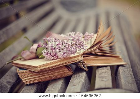 Forgotten books and branch of a lilac lie on a bench.