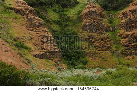Exposed rocks on a hill in Northern Oregon with trees bushes and wild grasses on a spring day.