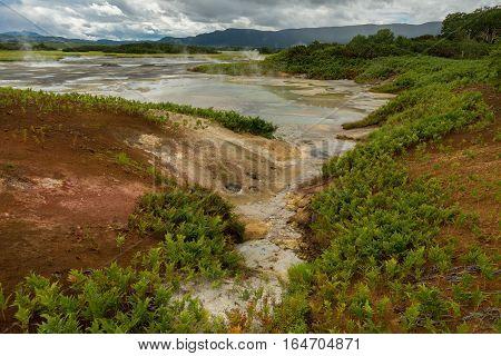 Beautiful summer landscape in the Uzon Caldera. Kronotsky Nature Reserve on Kamchatka Peninsula.