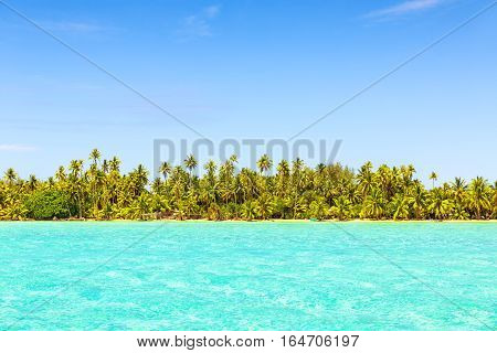 Line of coconut palm trees with turquoise sea on tropical beach